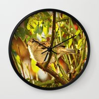 sparrow Wall Clocks featuring Sparrow by Judy Palkimas
