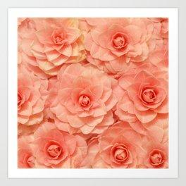 Pink Camelias... Art Print