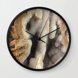 Tectosilica Silicified Coral Wall Clock