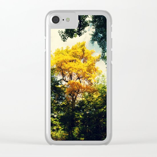 fall in Central Park Clear iPhone Case