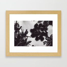 Jungle Canopy - Black and White Framed Art Print