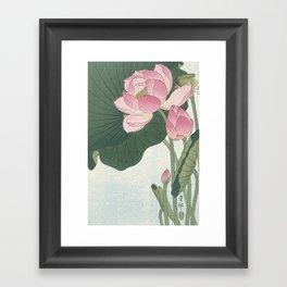 Flowering lotus flowers, Ohara Koson Framed Art Print