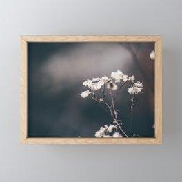 Faded Glory Framed Mini Art Print
