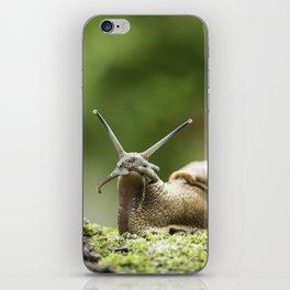 Wifi Snail iPhone Skin