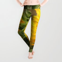 Sunflower from the Color Fashion Mix Leggings