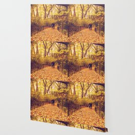Fall Foliage - Autumn's Finest - New York City Wallpaper