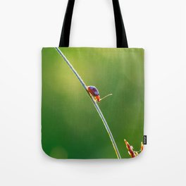 Little red bug perching on grass Tote Bag
