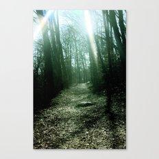 Sunlit Path Canvas Print