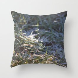 Frosty Underfoot Throw Pillow