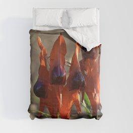 Sturt's Desert Pea Comforters
