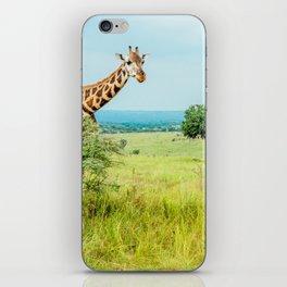 Giraffe, Murchison Falls, Uganda iPhone Skin