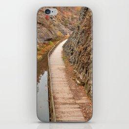 Paw Paw Boardwalk Trail iPhone Skin