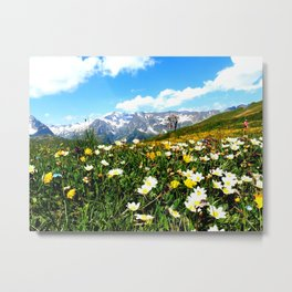 Summer in the Alps Metal Print
