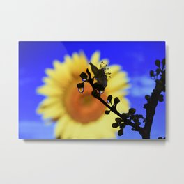 water drop flower Metal Print