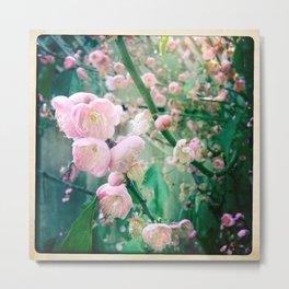 Bloom2 Metal Print