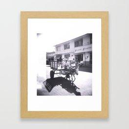 Burro Framed Art Print