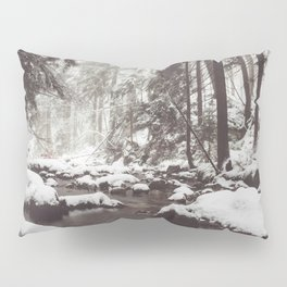 Cold Water Pillow Sham