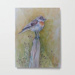 Flycatcher Common Bird on meadow Autumn scene Wildlife watercolor illustration Metal Print