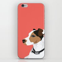 jack russell iPhone & iPod Skins featuring Dog - Jack Russell by bluebutton studio