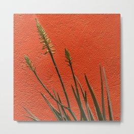 Red fine art print I Red wall I Aloe I red and green I Curacao I Cactus I Photo art print I Travel photography Metal Print