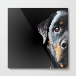 Rottie Love - Rottweiler Art By Sharon Cummings Metal Print