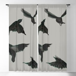 Common Starlings Blackout Curtain