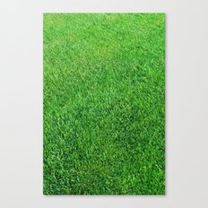 Lawn Canvas Print
