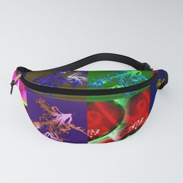ABSTRACT FOODS Fanny Pack