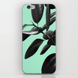 Ficus Elastica Beach Vibes #2 #foliage #decor #art #society6 iPhone Skin
