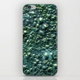 Rhaegal iPhone Skin