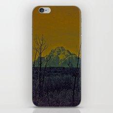 #82 iPhone & iPod Skin