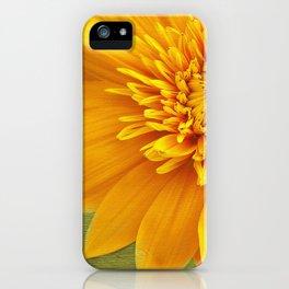 Sunshine Smile iPhone Case