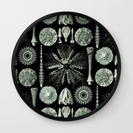 Ernst Haeckel - Scientific Illustration - Echinidea (Sea Urchins) Wall Clock