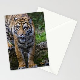 My Water  Stationery Cards