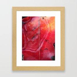 Red Leaf in the Rain Framed Art Print