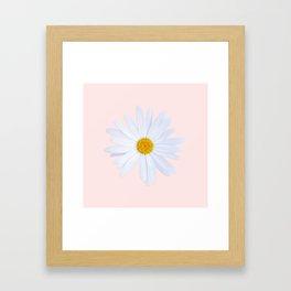 Daisy On Pink Framed Art Print