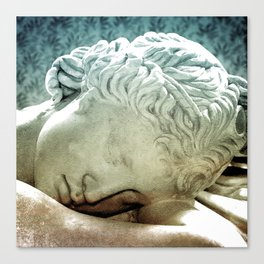 The Sleeper Canvas Print