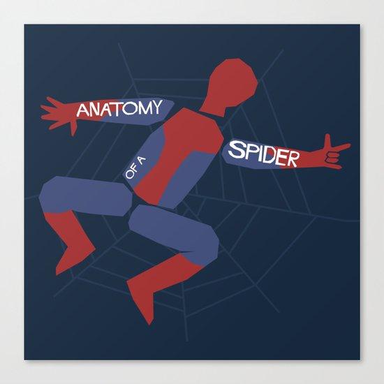 Anatomy of a Spider Canvas Print