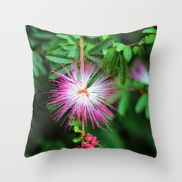 Flower photography by Uthpala Shyamendra Throw Pillow