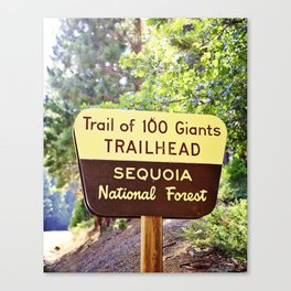 Trail of 100 Giants Vintage National Forest Sign Canvas Print