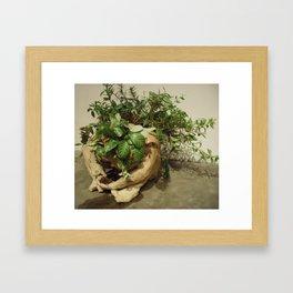 hope for a flower cherub 1 Framed Art Print
