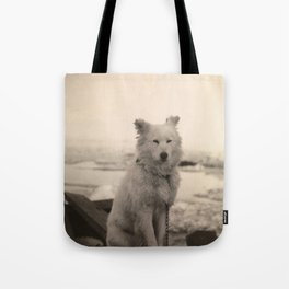 Dog on Nansen's Fram Expedition to the Arctic Tote Bag