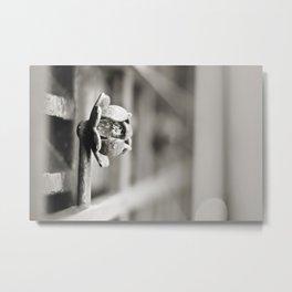 Fence B/W Metal Print