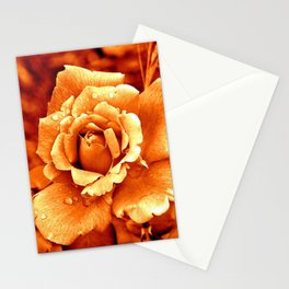 Orange rose Stationery Cards