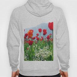Giant tulip garden Hoody