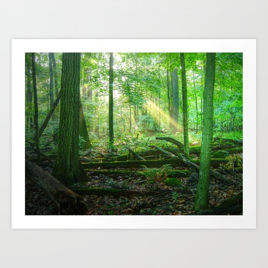 Devil's Lake State Park Art Print