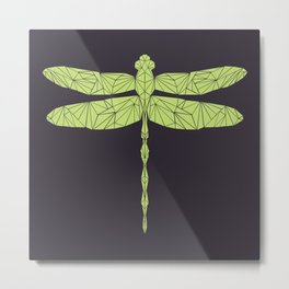 The dragonfly is not envoius Metal Print