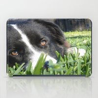 border collie iPad Cases featuring Thoughtful Border Collie by elledeegee