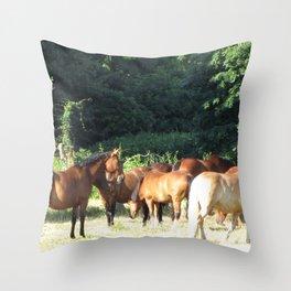 The freedom to enjoy Throw Pillow