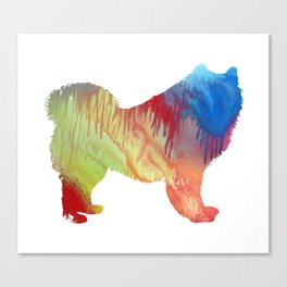 Samoyed Canvas Print